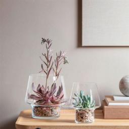 Стеклянная ваза для суккулентов 15 см Eva Solo \ 568187